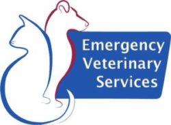 Emergency Vet Services
