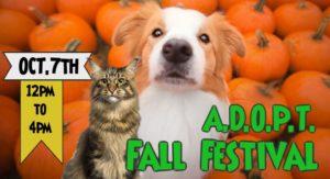 10/7 A.D.O.P.T. Fall Festival