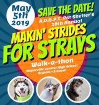 5/5 – Makin' Strides for Strays Walk-a-thon
