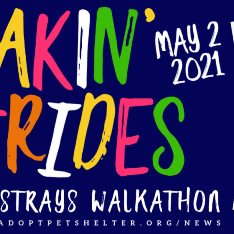 5/2/2021 - Makin' Strides for Strays Walkathon